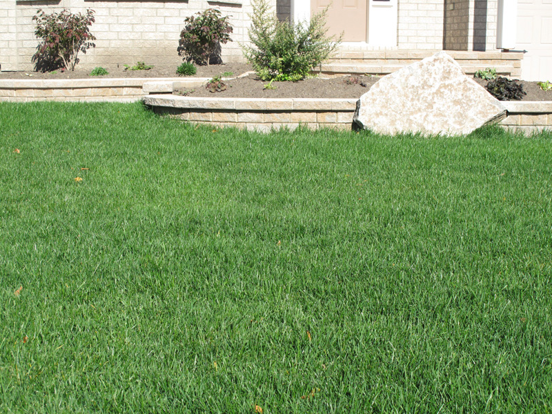 Landscape design in ottawa using artificial vs real grass for Garden design vs landscape architecture