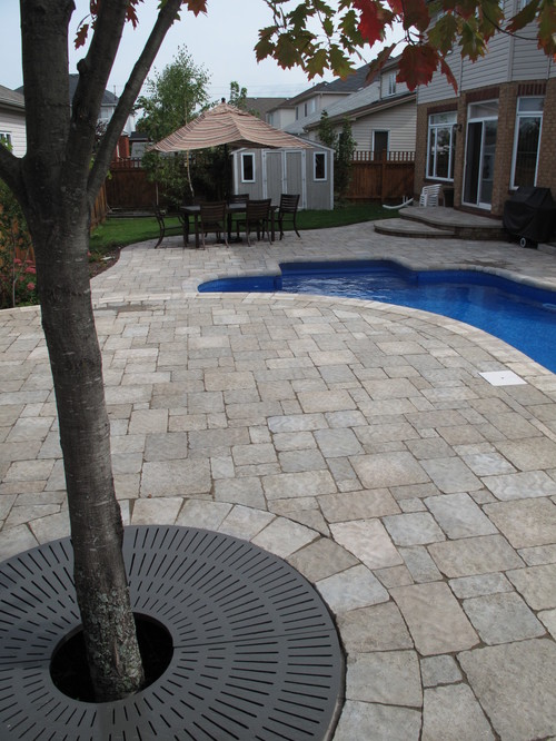 Patio, Pool and Landscaping